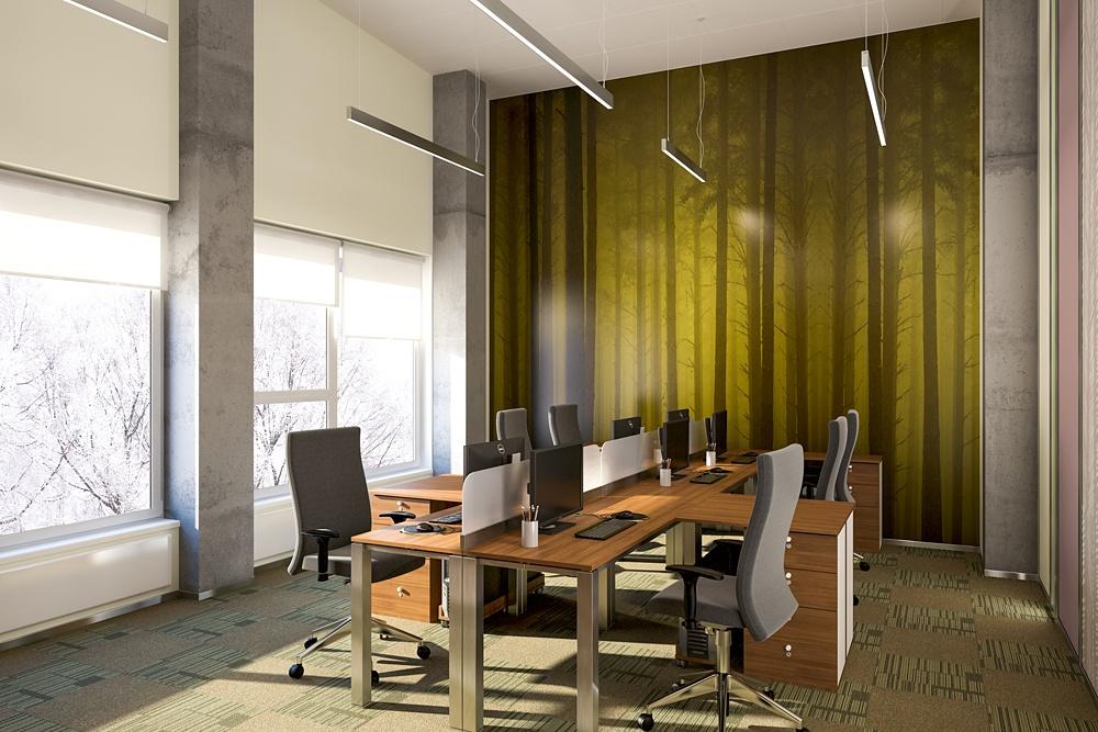 Офис золотодобывающей компании «KINROSS». Последний и предпоследний этаж отличаются высотой потолка, оборудованием (радиаторами), цветом стен, растениями и расположением мебели. 1.